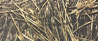 Mossy Oak Shadowgrass